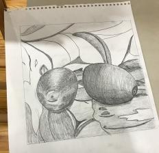 drawing-lemons.jpg